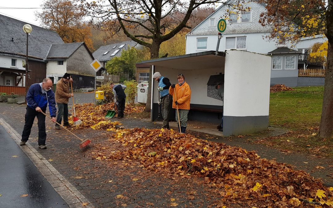 Herbst-Aufräumaktion 2018